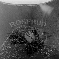 20130128001506-rosebud.jpg